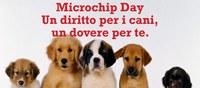 Microchip Day - Un diritto per i cani, un dovere per te