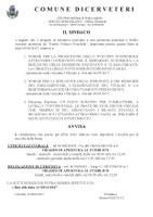 RACCOLTA FIRME N. 2 REFERENDUM E 1 PETIZIONE - PARTITO POLITICO POSSIBILE  -  SCADENZA 03/11/2017